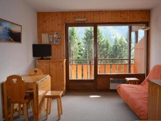 PLEIN SUD C Studio + small bedroom 5 persons 408/190, Le Grand-Bornand