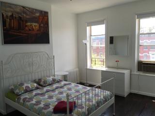 Beautiful 3 Bedroom Apartment, Brooklyn