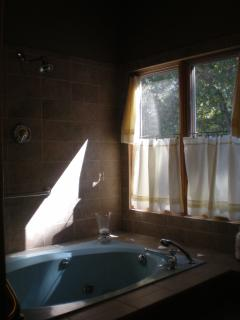 Master spa tub with tiled combo shower