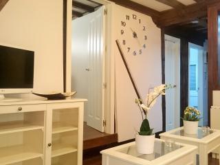 Apartamento Reina  céntrico en el Casco  + Wifi, Toledo