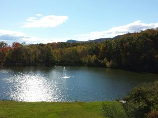 Lake! Pool! Hot Tub! Barbecue! Volley Ball! Boat!, New Paltz