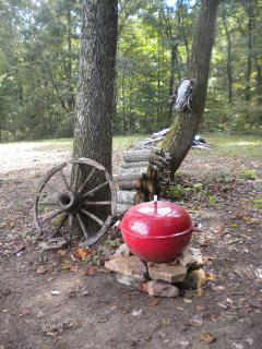 Charcoal grill and firewood provided