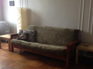 Sunny, spacious one-bedroom apartment, New York City