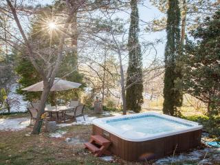 Meadow Ridge Lodge with Hot Tub!