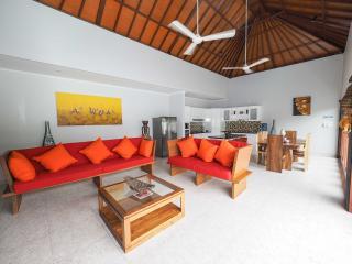 Brand New!! Villa Santai Sanur