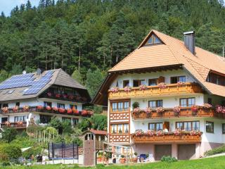 Vacation Apartment in Elzach (# 6791) ~ RA63492, Schramberg