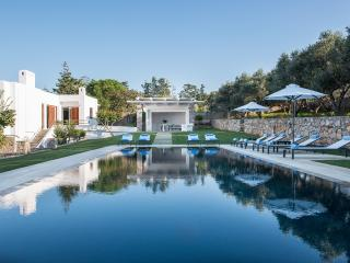 Villa Oleander for 14 persons, La Canea
