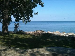 BIG BLUE - Pelee Island