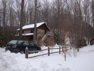 Catch Cabin Fever at Laurel Creek Cabin!, Todd