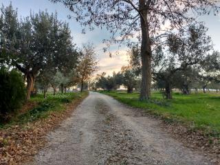 Casale Re di Coppe Red Flat-Soluzione per famiglie nella campagna Abruzzese