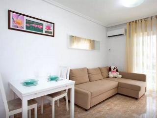 3 room+Pool+WiFi+Satellite+WaterFilter+AirConditio, Torrevieja