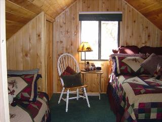 Bearfootin' Cabin! First-Tier Lakefront Log Charmer-Private Deck, Hot Tub, F/P