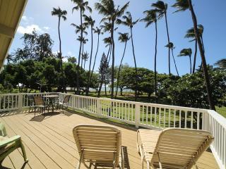 Private Beachfront House 4 Bd  2/12 BA. sleeps 16, Kihei
