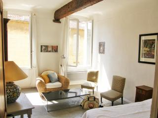 Sunny apartment in  downtown Aix en Provence