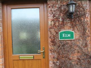 Elm, East Huntspill