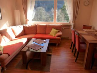 Vacation Apartment in Bad Wildbad (# 6659) ~ RA63397