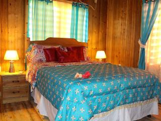 1st Br w/ queen size bed and air-conditioning