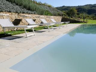 Independent house in Greve in Chianti, Chianti, Tuscany, Italy