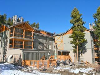 Ski Watch - Ski In/Out, Exclusive Peak 8 Location!, Breckenridge