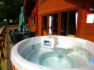 Birch Lodge 21 with hot tub - 102767