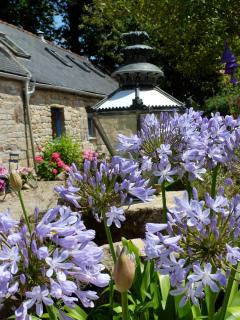 Longere with courtyard lamp and Agapanthus.