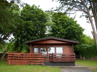 Stunning lodge with Hot Tub- 102761, Dumfries
