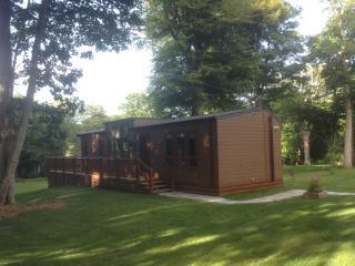 Luxury Platinum Woodland Lodge, St Ives