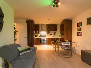 Brand New 2BR Apartment at Victoria Park, Londres