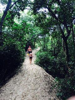 trilha para a praia Pico da Cruz, entre as praias de Joaquina e Campeche.