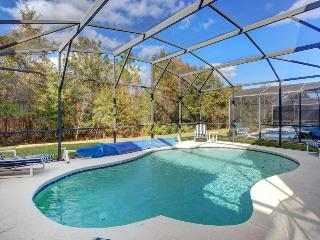 Tropical home 10 miles to Disney w/ game room & private pool! Snowbirds welcome!