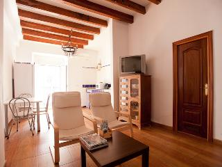 2BD LUXURY BEST LOCATION A/C+WIFI, Sevilha