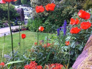 Brook House 1 garden in summer