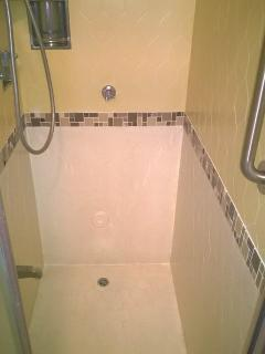 Master shower has 3 steps to enter, there is a hand rail.