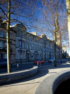 Tree lined Tay Street