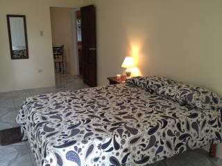 Apartment in Jamaica for rent, Sandy Bay