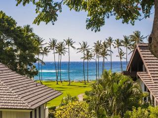 Kiahuna 106-Terrific 1 bd short walk to amazing beach. Free mid-size car., Koloa