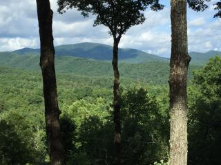 Nugget's Nest - You Won't Forget the Mountain View, Blue Ridge