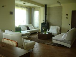Superb Villa For Rent , Cioplea area, Predeal
