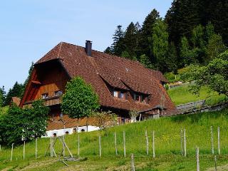 Vacation Apartment in Bad Rippoldsau-Schapbach (# 6211) ~ RA62925
