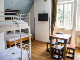 Guest Room in Freiburg im Breisgau -  (# 9347), Friburgo