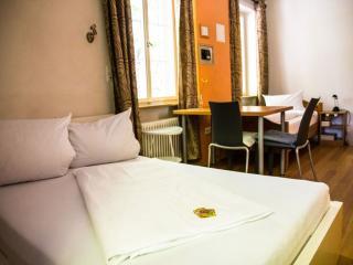 Guest Room in Freiburg im Breisgau -  (# 9345)