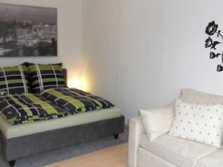 Vacation Apartment in Freiburg im Breisgau - 323 sqft, 30sqm, for 1-3 persons (# 9356), Fribourg