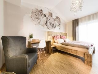 Guest Room in Friedrichshafen - 194 sqft,  (# 9391)