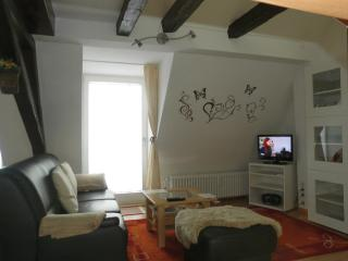Vacation Apartment in Freiburg im Breisgau - 1 living / bedroom, max. 2 people (# 9415)