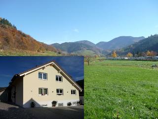 Vacation Apartment in Muenstertal - 861 sqft, 1 bedroom, 1 children, max. 4 people (# 9417), Münstertal