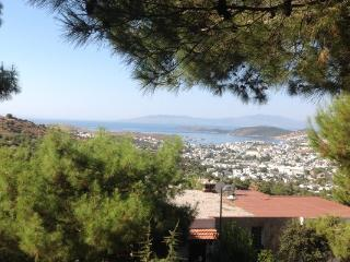 Rental Villas 3+1 Near the Center of Bodrum 1632