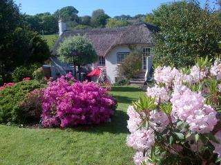 Gorgeous thatched cottage in idyllic setting, Truro