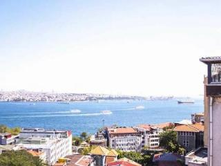 COMFORTABLE V.I.P. SUITES, Estambul