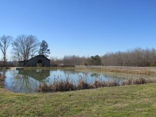 Opposite view of the pond showing the vintage horse barn.