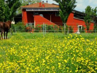 AGRITURISMO 'ADRIANO PEDRETTI', Badia Polesine